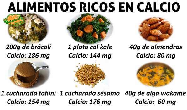 artritis reumatoide dieta vegetariana pdf