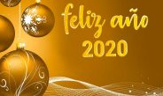 LLEGAMOS AL 2020